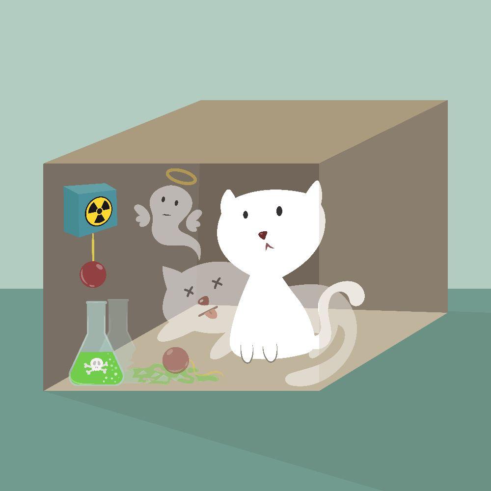Schrödinger's cat physics