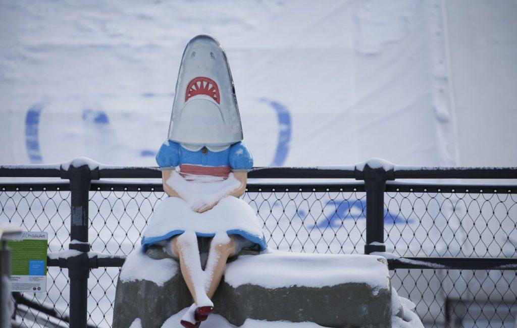 Buffalo Shark Girl