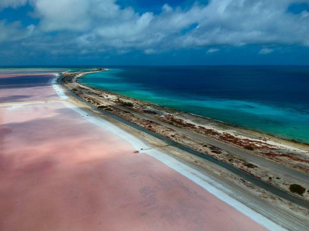 pink beach bonaire island