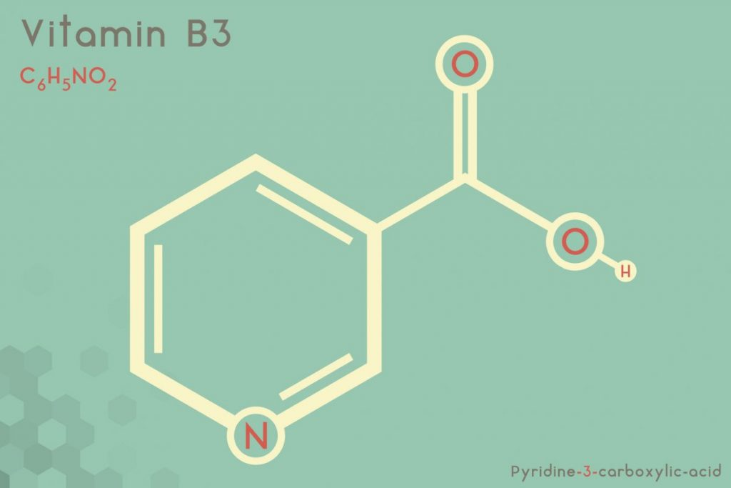 vitamin B3, niacin and pellagra