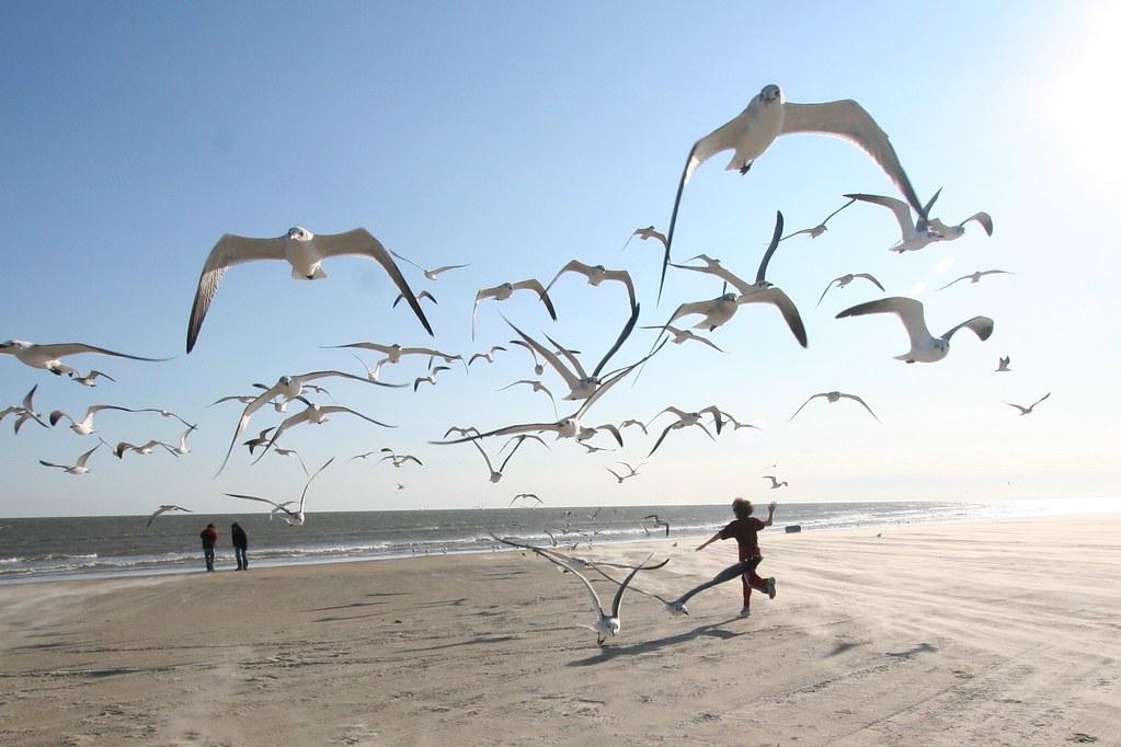 Running on the beach in Galveston