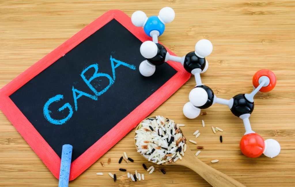 GABA ionotropic metabotropic