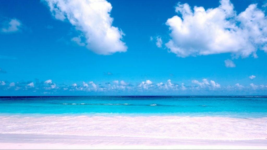 pink sand elbow beach