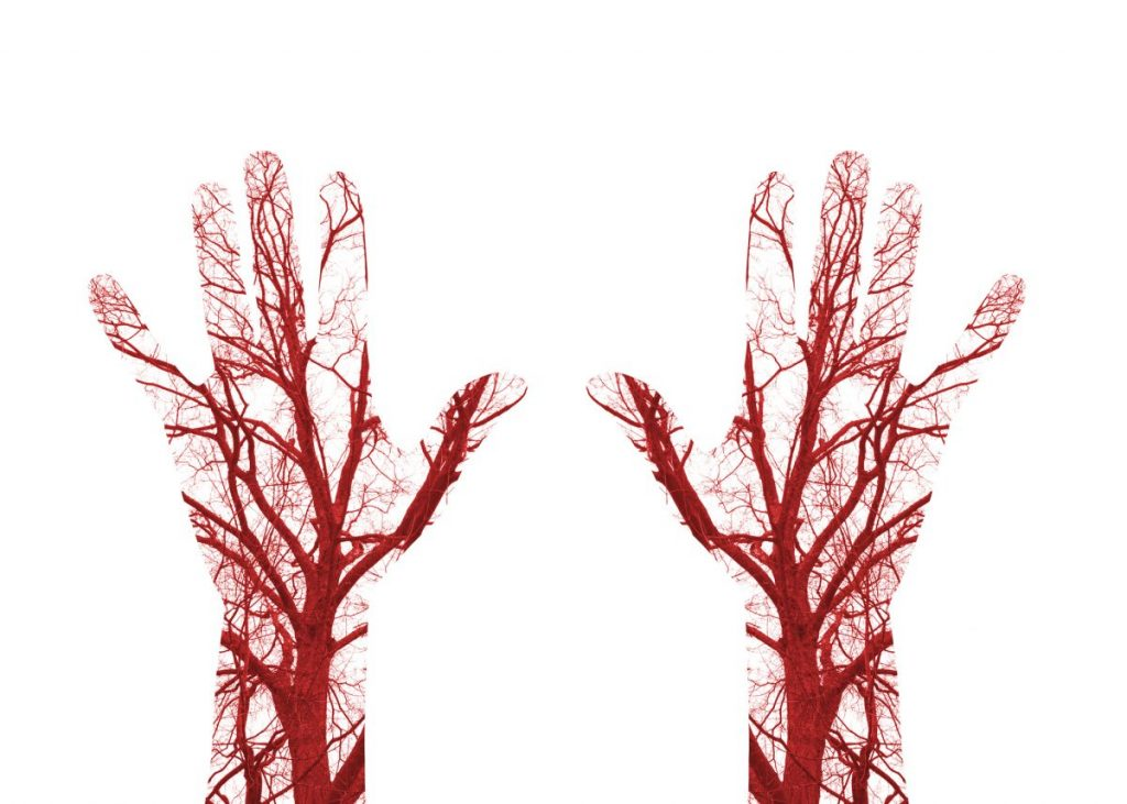 Blood Vessels Hand