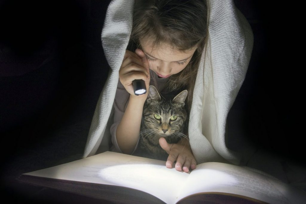 Girl reading a book in the dark with her cat