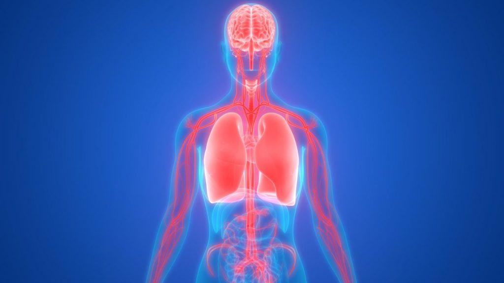 causes respiratory sinus arrhythmia