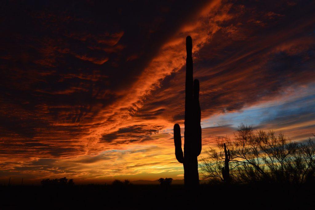 Lost Dutchman State Park, Apache Junction, Arizona, US