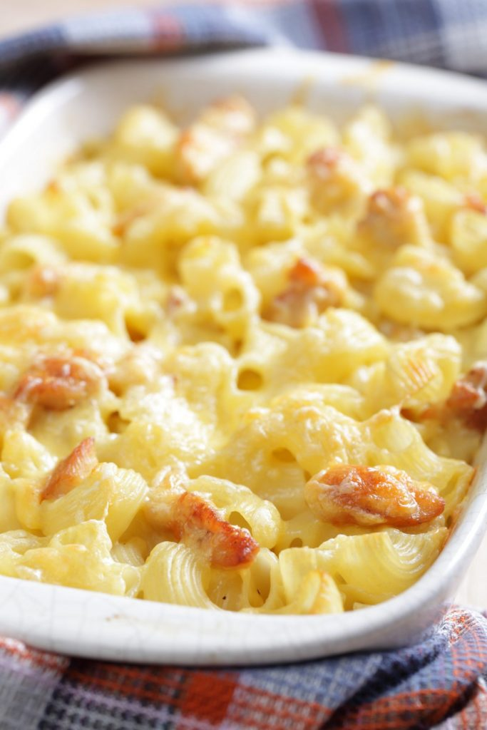 macaroni and cheese chicken casserole