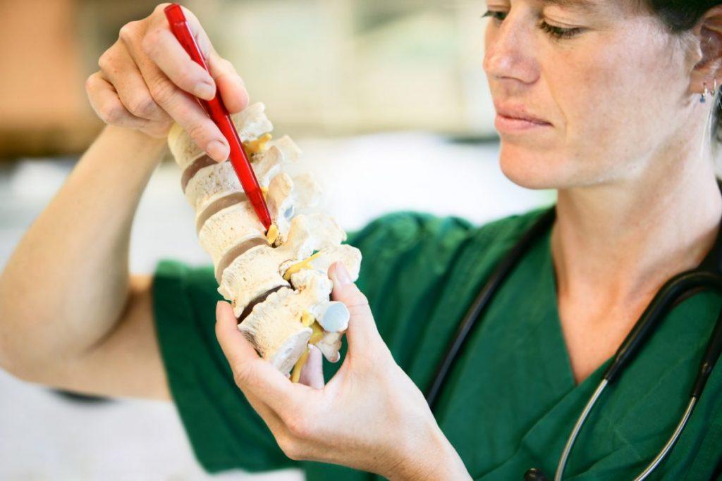 lumbar puncture vertebrae