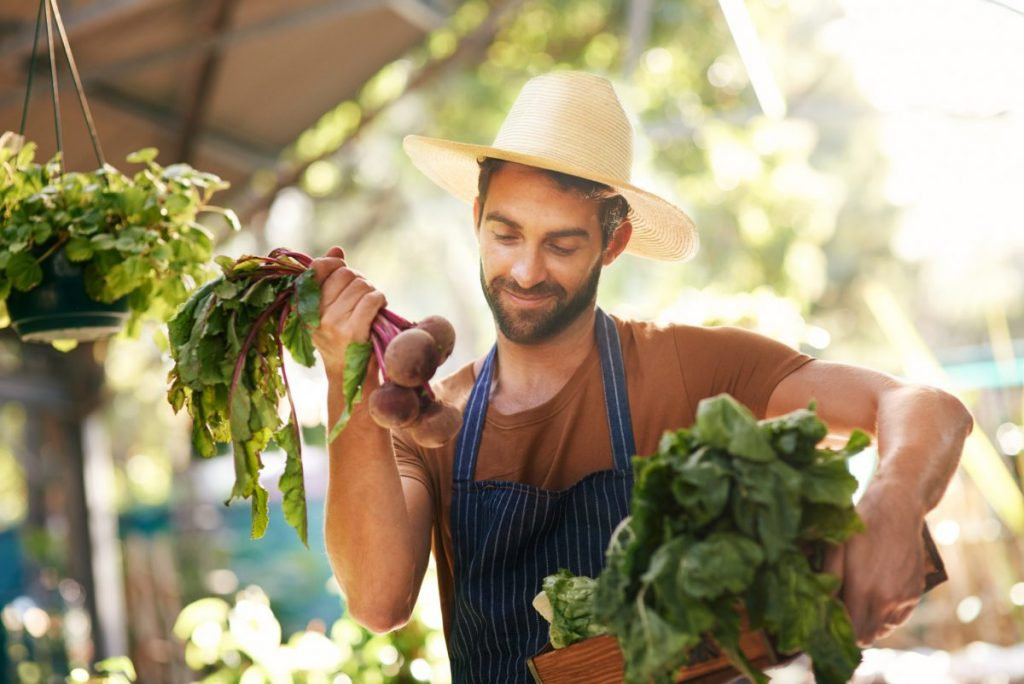 choosing beets leaves