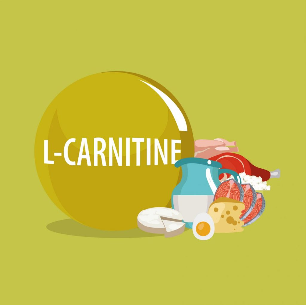 L-carnitine food sources caricature