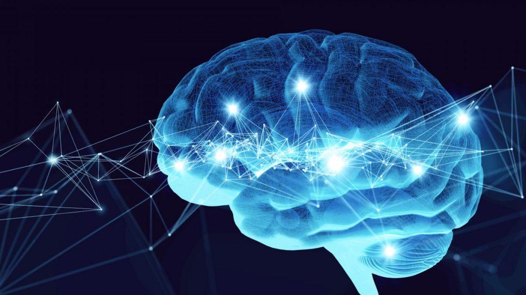 Coma Brain Neural Signals