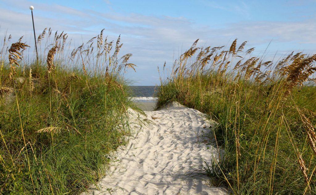 Path to a beach - Sea Pines, Hilton Head Island SC