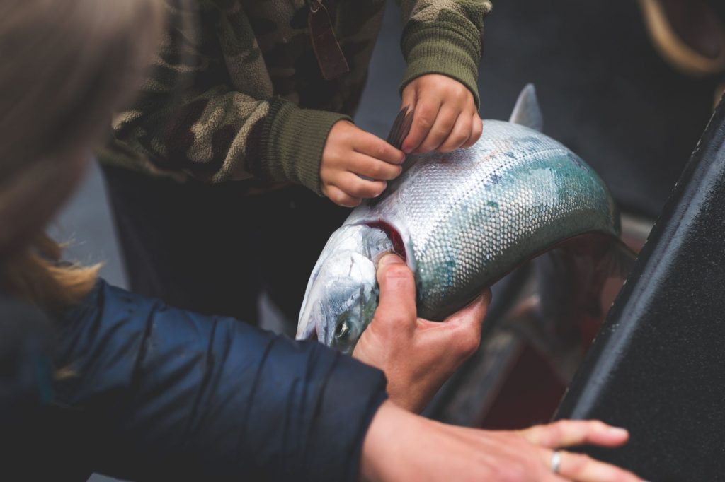 Two pairs of hands - one a child's - hold their most recent catch in Alaskan waters. The child is holding the silver fish's fin.