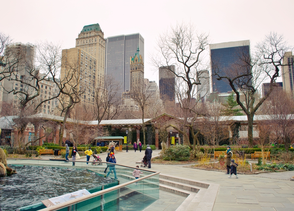 Central Park Zoo in New York is one of the largest the USA