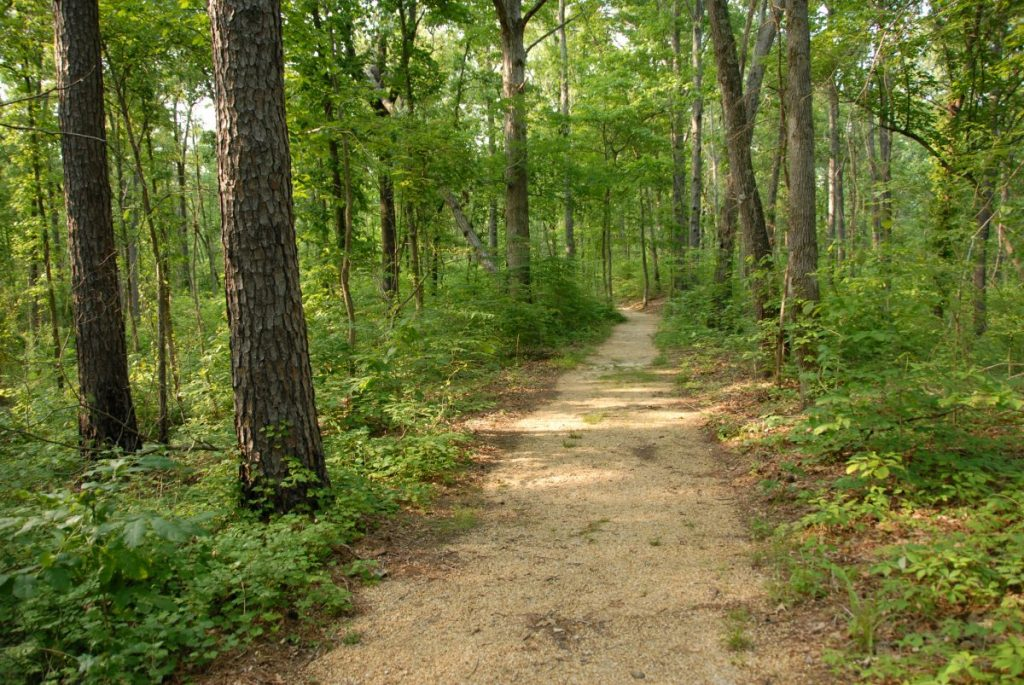 original trail natchez trace