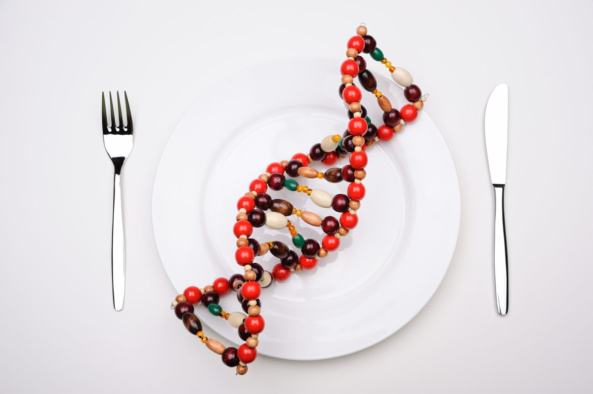 Understanding Both Sides of the GMO Foods Discussion