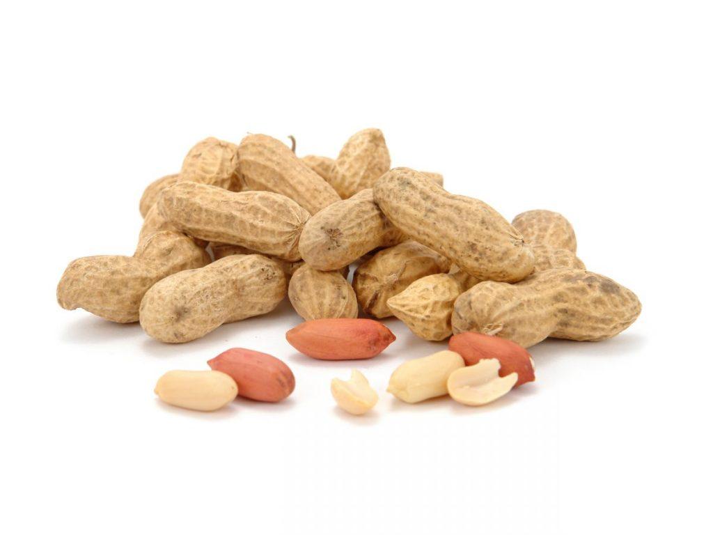 dogs peanuts safe