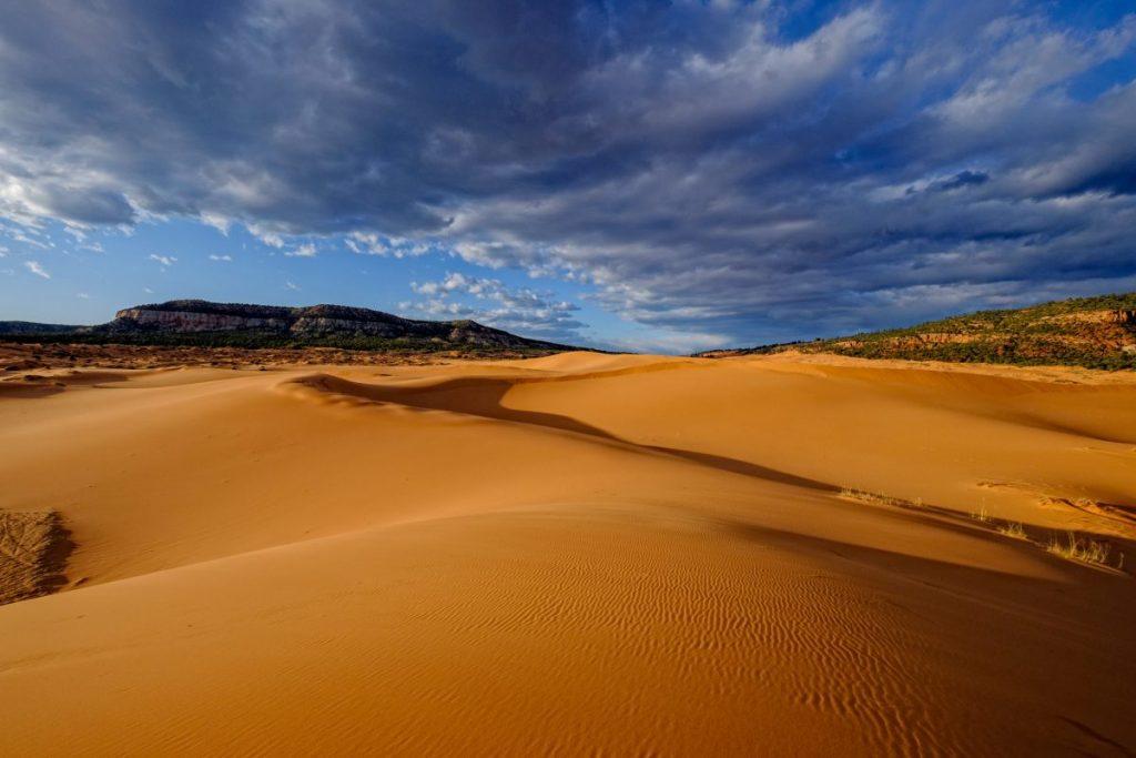 Coal Pink Sand Dunes