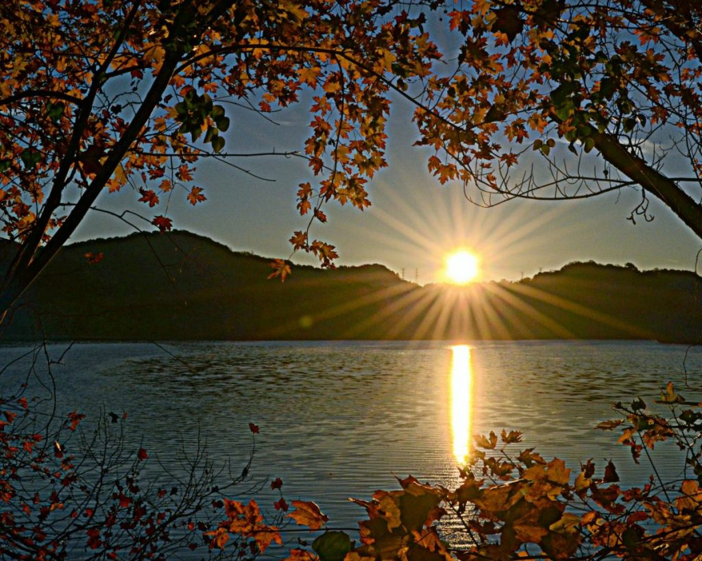 radnor lake sunrise