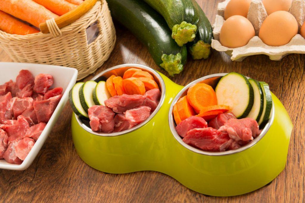 Dog food carrots meat