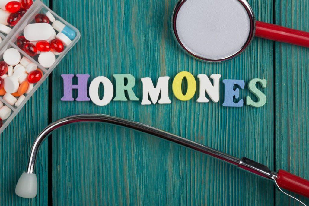 Hormones Endocrine System