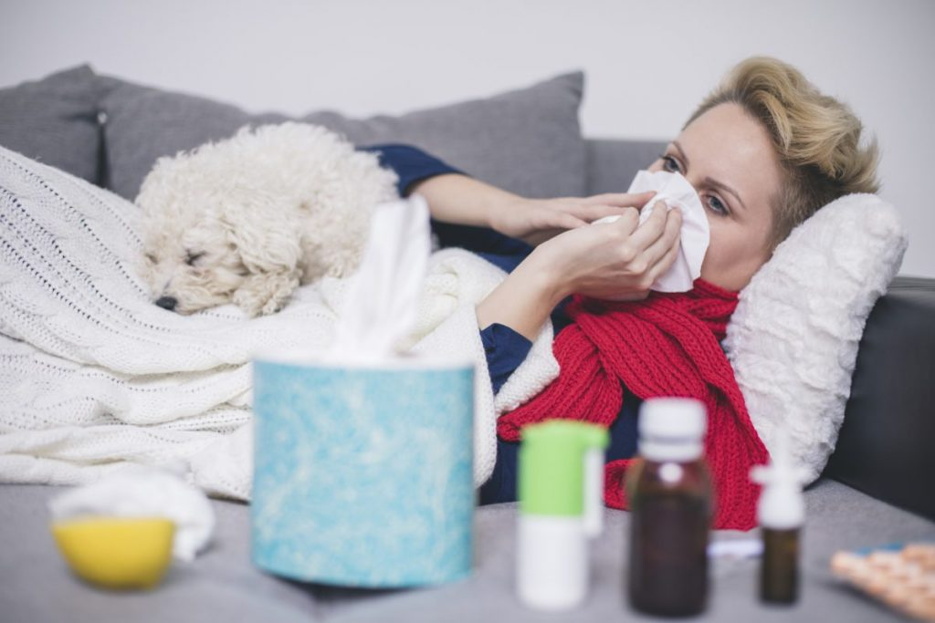 human sick infection dog