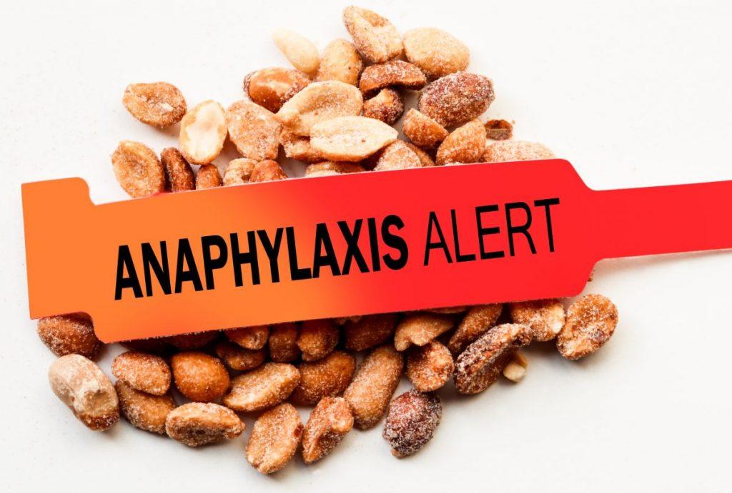 anaphylactic shock dogs almonds adrenaline