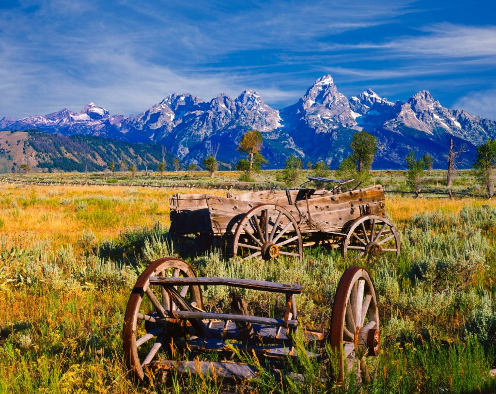 Weathered rustic wagon in pasture with the Grand Tetons in background, WY