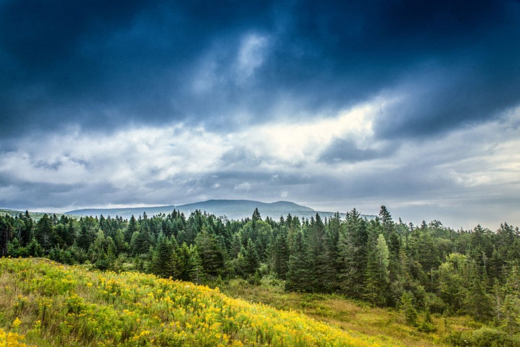 The beautiful Caledonia Highlands of Fundy National Park, New Brunswick, Canada. The park is situated in the transition zone where, to the North, lies a strictly boreal coniferous forest and, to the South, a forest dominated by deciduous trees.