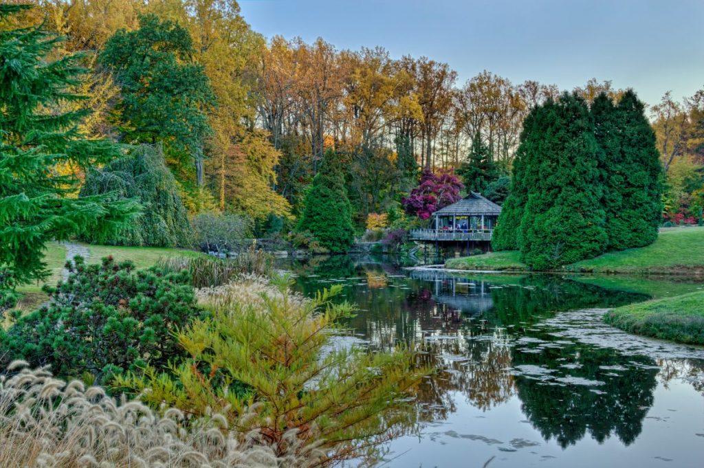 Brookside Gardens Rockville