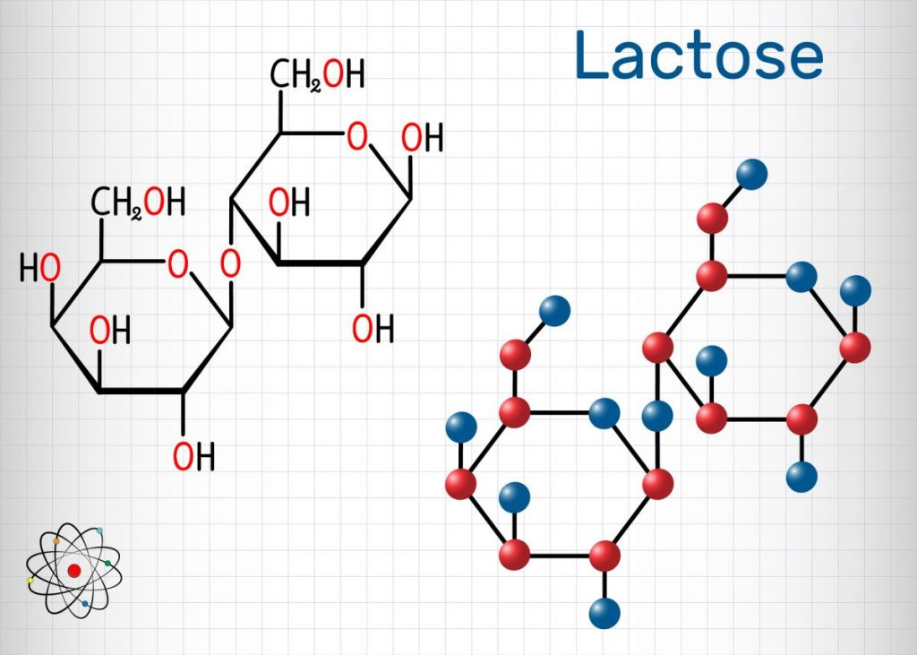 lactose, lactase, chemical composition, milk