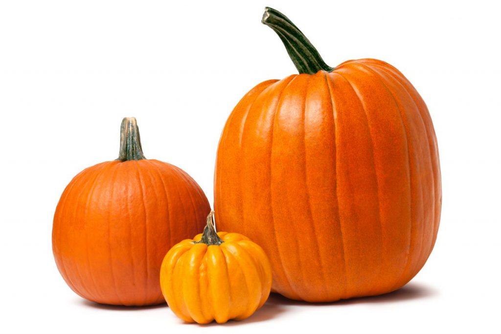 types carving pumpkins