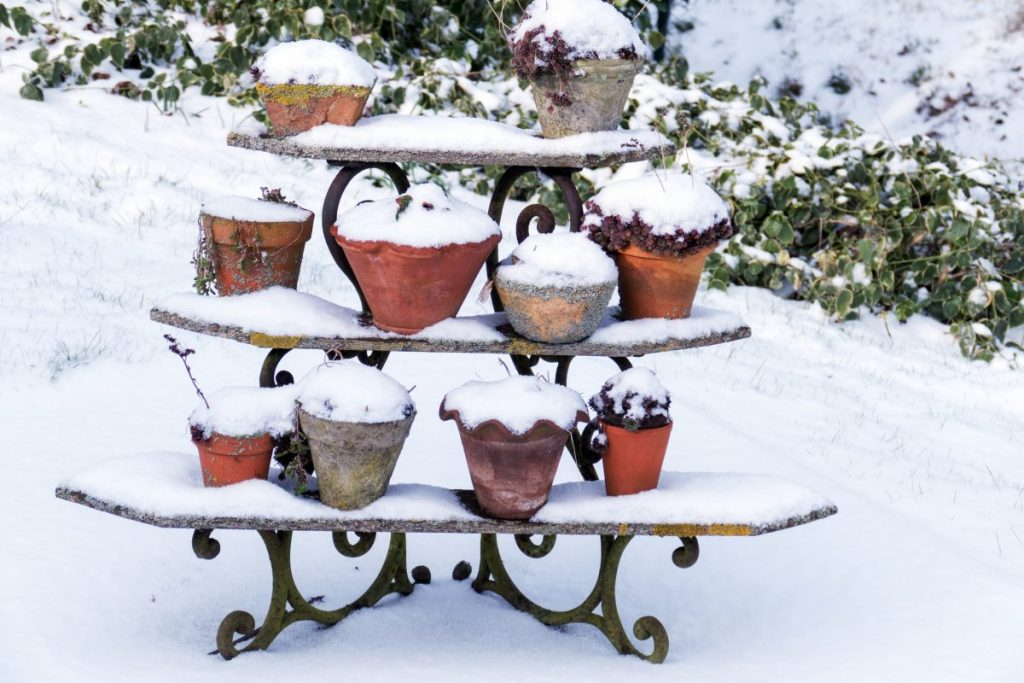 flower pots in snow