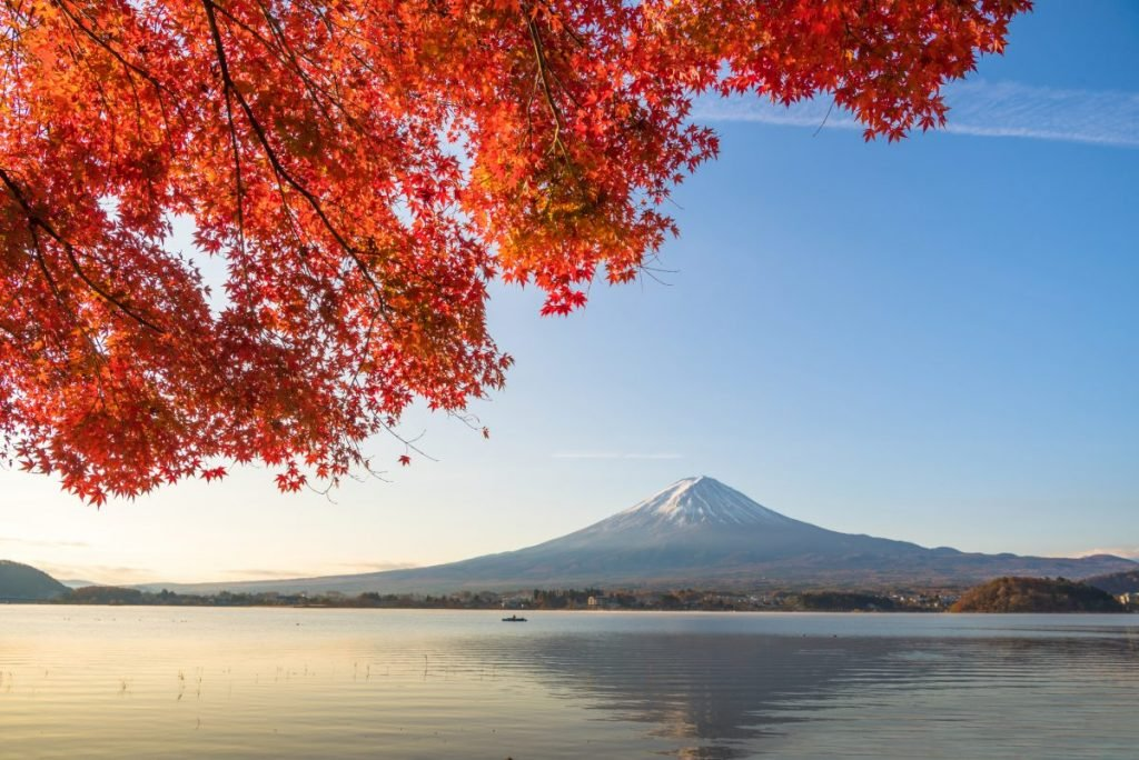 Red maple leaves frame Mt. Fuji in Japan.