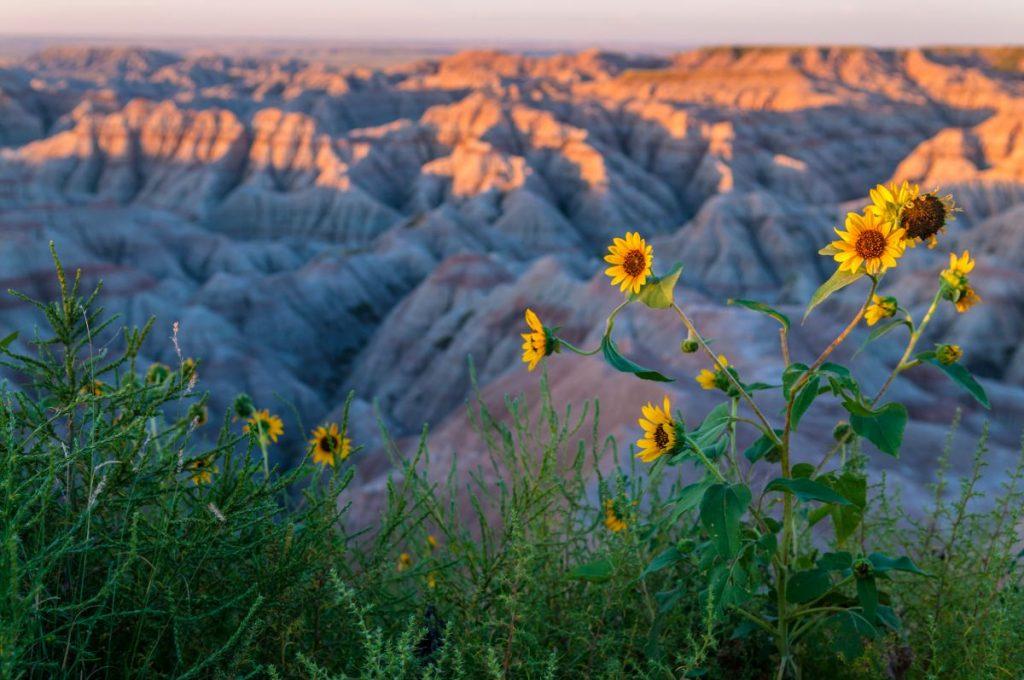 Badlands Landscape - National Park South Dakota