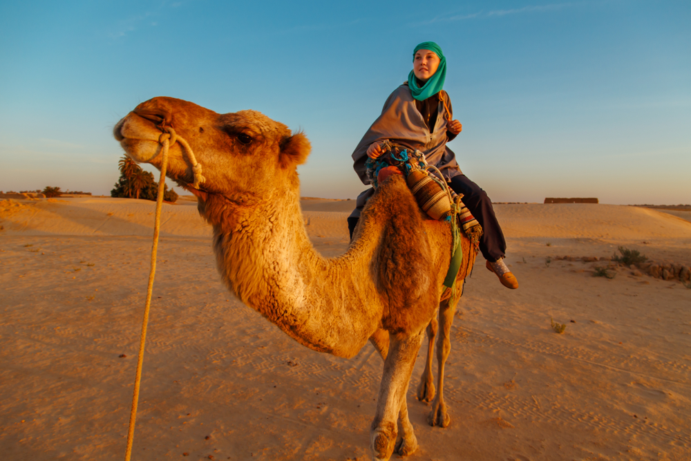 Woman in Bedouin clothes riding a camel in the Sahara desert