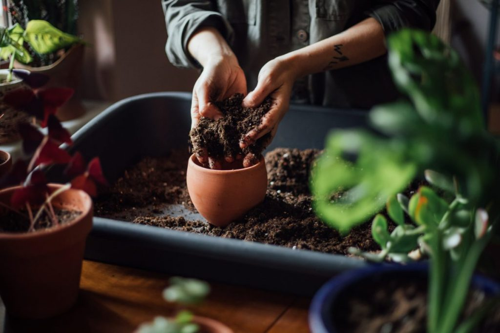 Hands filling pot with soil