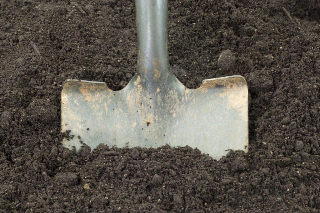 Shovel in dirt