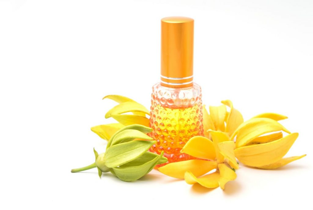ylang ylang oil mood benefits