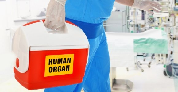 All About Life-Saving Organ Transplants