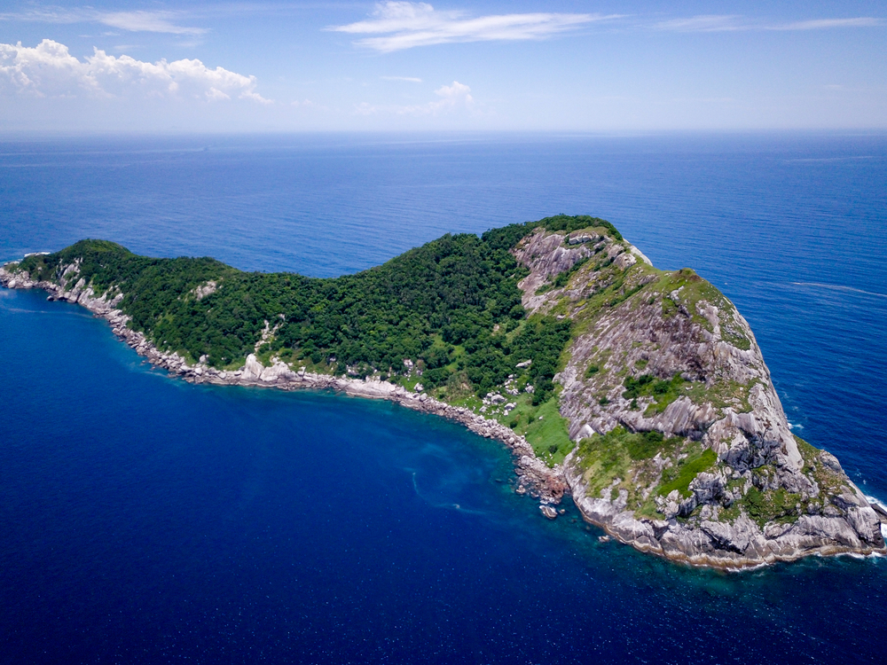 Queimada Grande Island, one of the most dangerous place in the world,