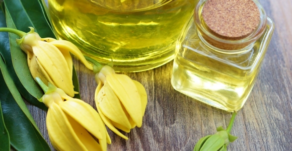 The Benefits of Ylang Ylang Essential Oil