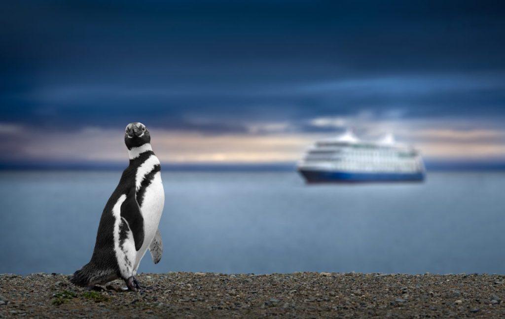 around the world cruise ship