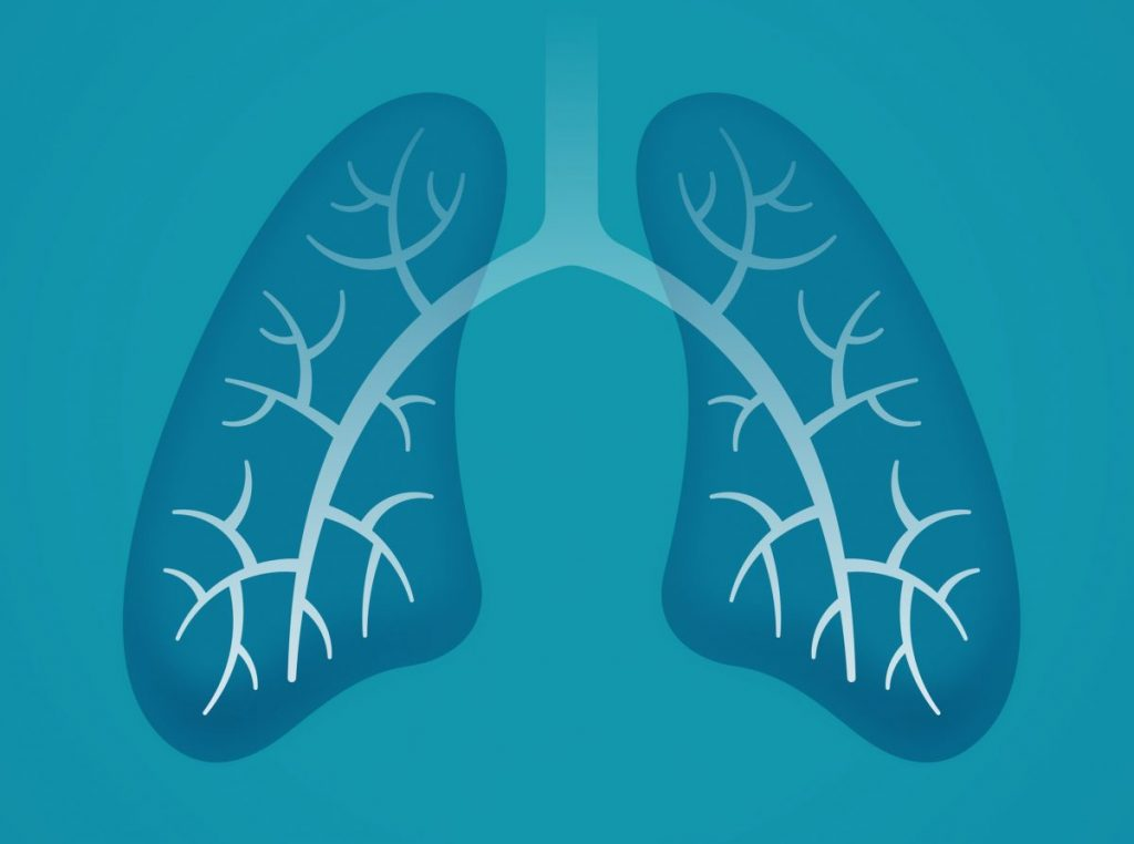 healthy lungs oxygen inhalation exhalation