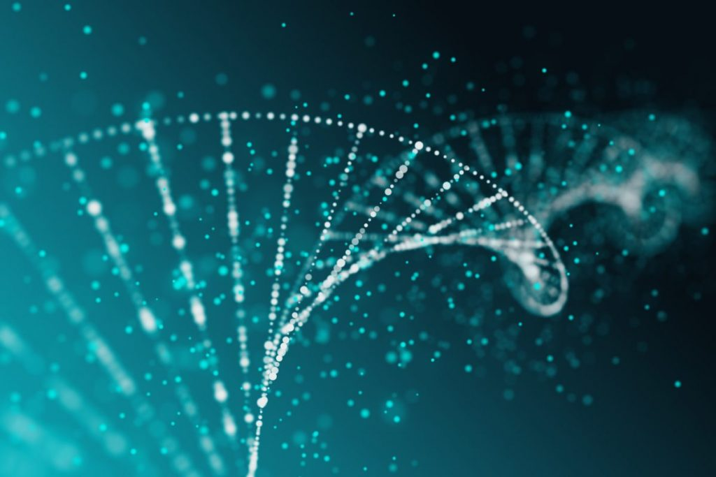 What Is Epigenetics DNA