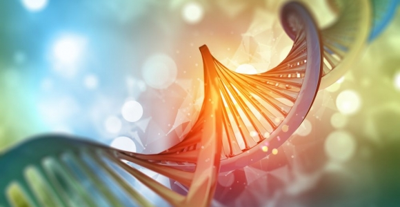The Controversy and Curiosity Surrounding Epigenetics