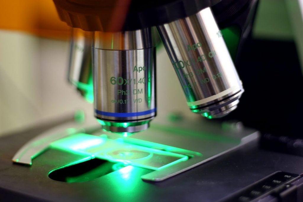 researcher microscope antibody