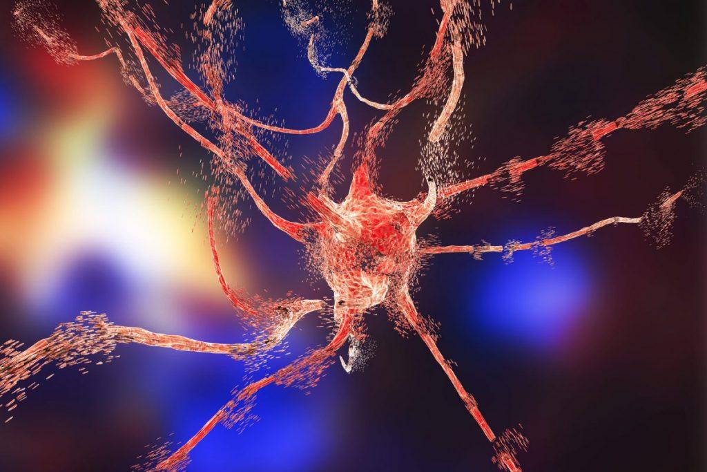 Central Nervous System Progression