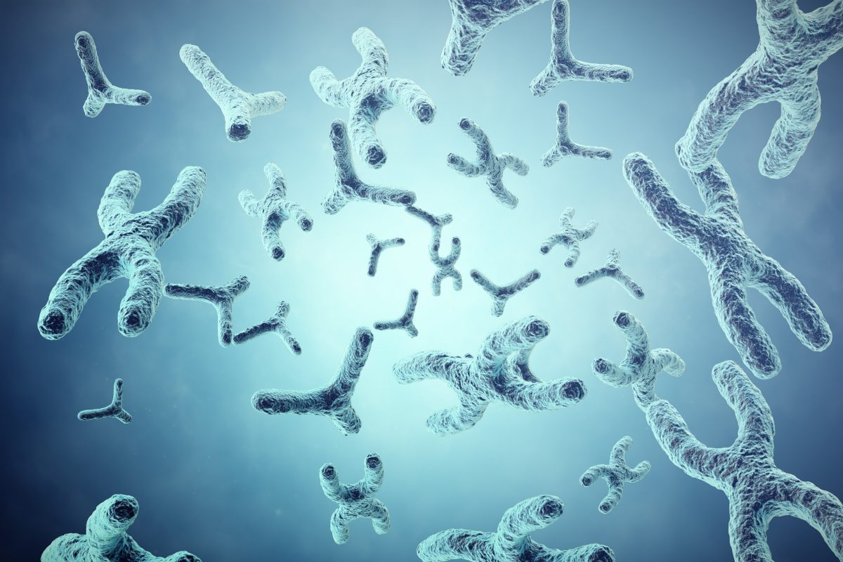 XY Chromosome Recessive